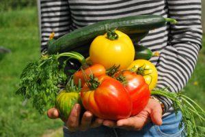 Cultivating Childhood Wellness Through Gardening