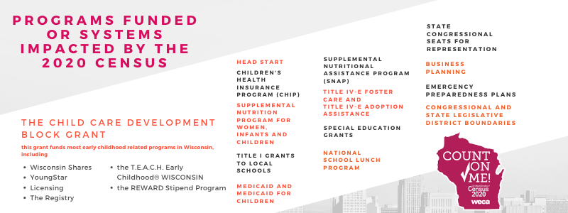 Programs FUnded or systems impacted by the 2020 Census